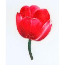 Термоаппликация с 3D эффектом HKM Красный тюльпан