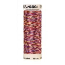 Нить для вышивания мультиколор,POLY SHEEN MULTI METTLER, 200 м